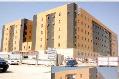 9. Hammady Hospital
